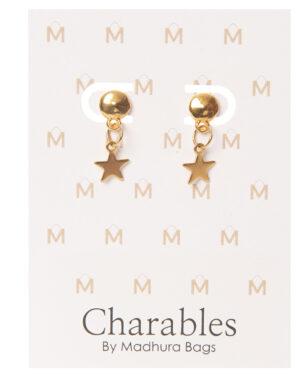 cahrables oorbellen gouden ster
